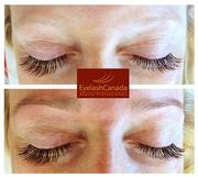 Eyelash Canada Intensive Online Eyelash Extensions Training